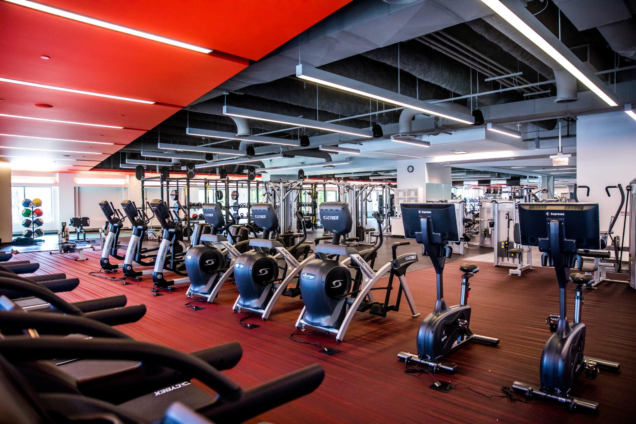 Best Fitness Free Tracker Online